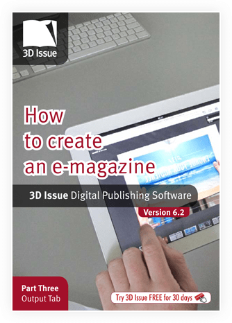 3D Issue user guide output tab